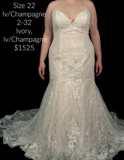 Size 22 2353-Orchid